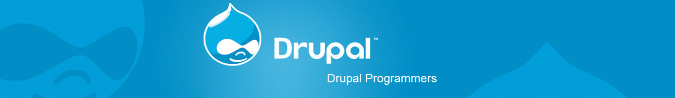 Drupal Website Development Company Mumbai