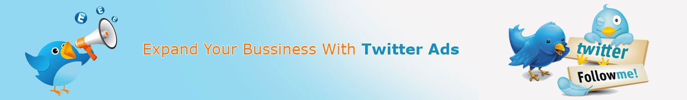 Expand Your Business With Twitter Ads